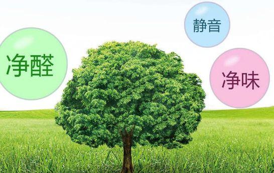 汇绿地板:内提素质,外树形象!徐州